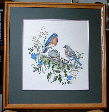 Counted Cross Stitch Birds Eastern Bluebird Pair