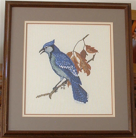 Blue Jay Counted Cross Stitch.